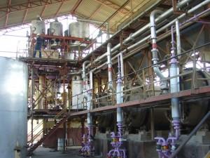 Extracción expeller oleaginosas